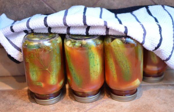 Консервированные огурцы в томате